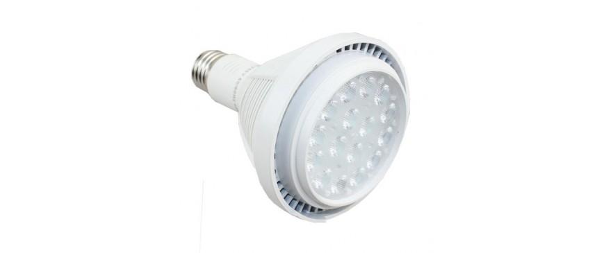 Ampoules PAR led